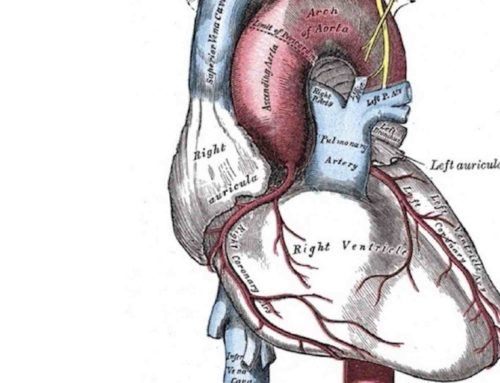 CPAP prevents Atrial Fibrillation (AF) in OSA